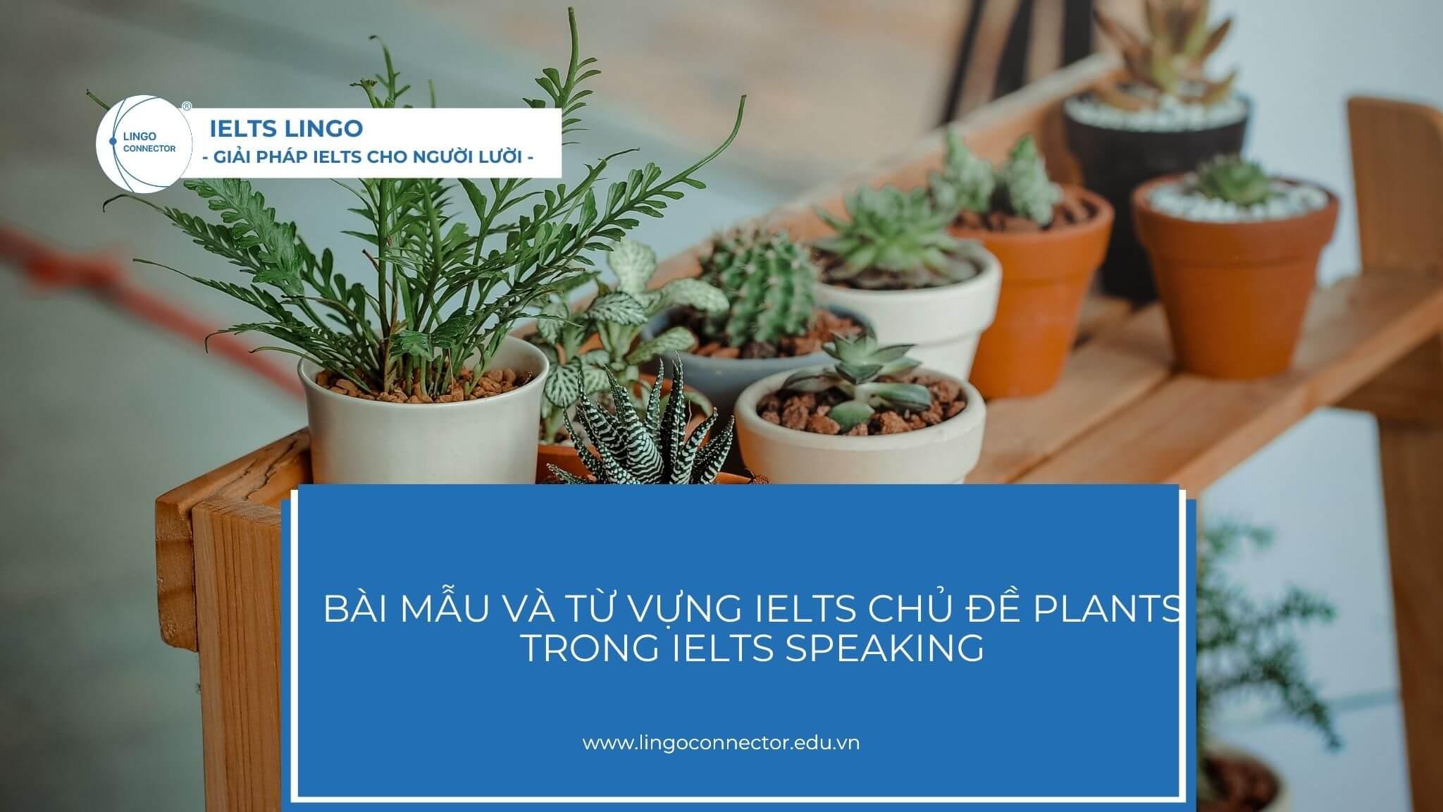 tu-vung-ielts-chu-de-plants